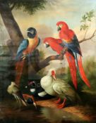 After d'Hondecoeteroil on canvasParrots and ducks in a landscape48 x 38in., unframed