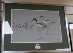 Richard Joicey (20th century British), pastel, Avocets, signed, 34 x 50cm