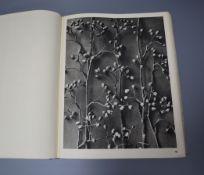 Rapin (Henri) La Sculpture Decorative Moderne 1925-29