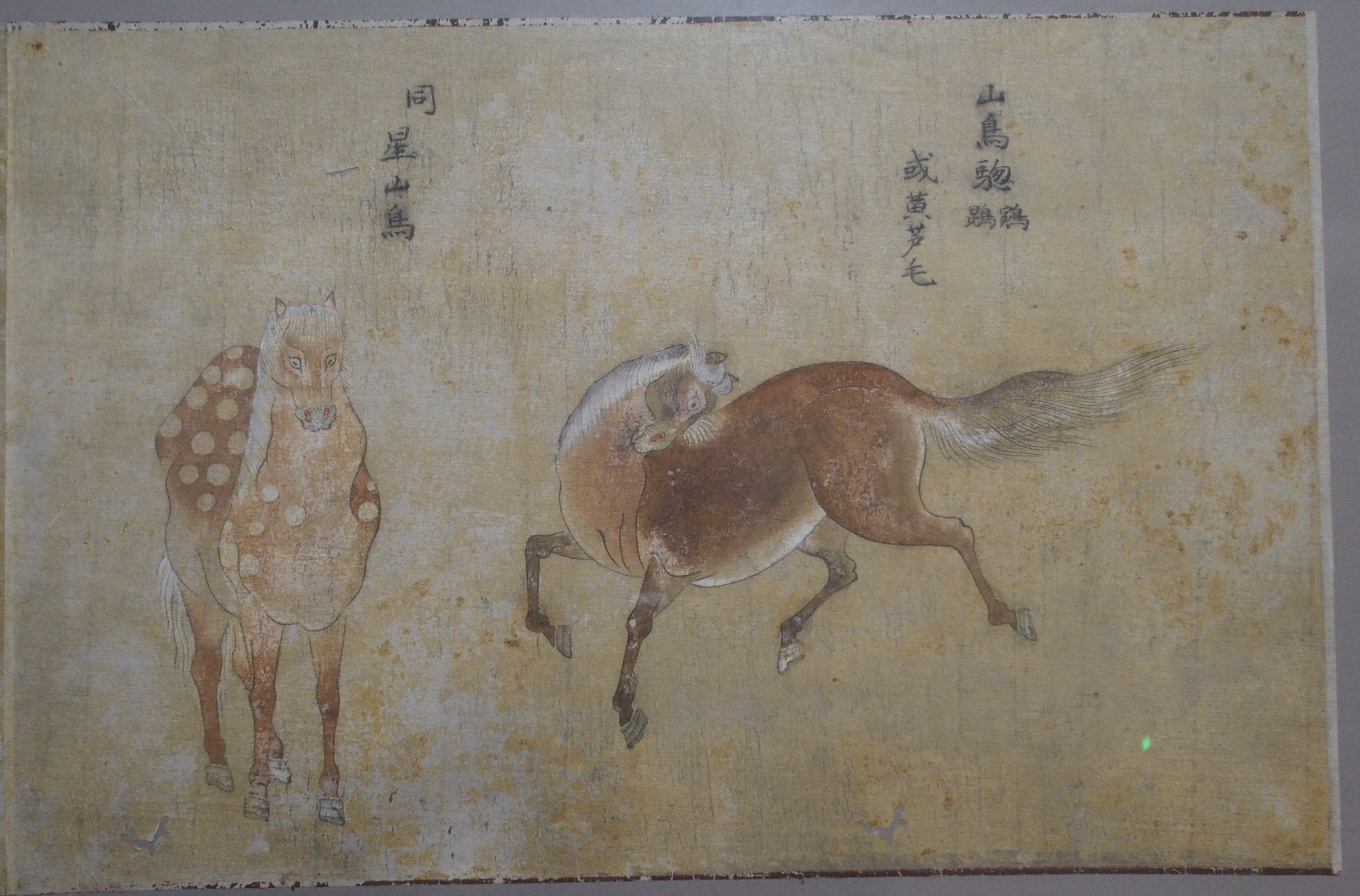 Lot 54 - TWO CHINESE WATERCOLOUR PAINTINGS OF HORSES one with four horses in two sections, 26cm x 78cm and