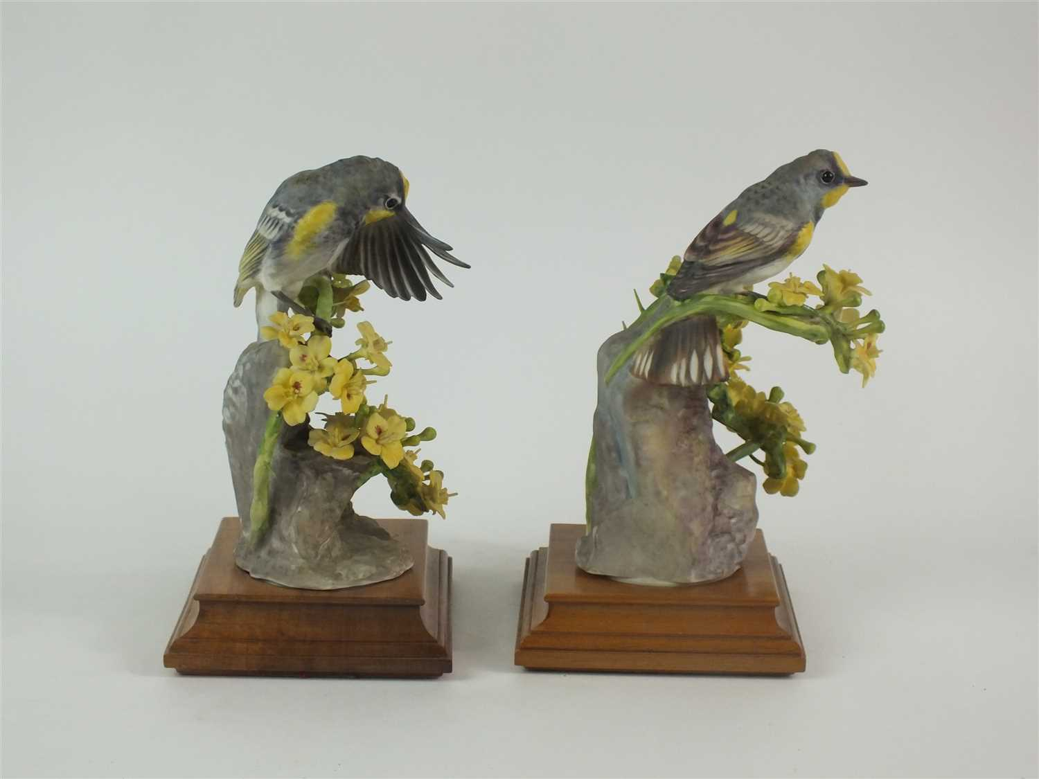 Lot 76 - A pair of Royal Worcester figures of Audubon Warblers on Palo Verdi