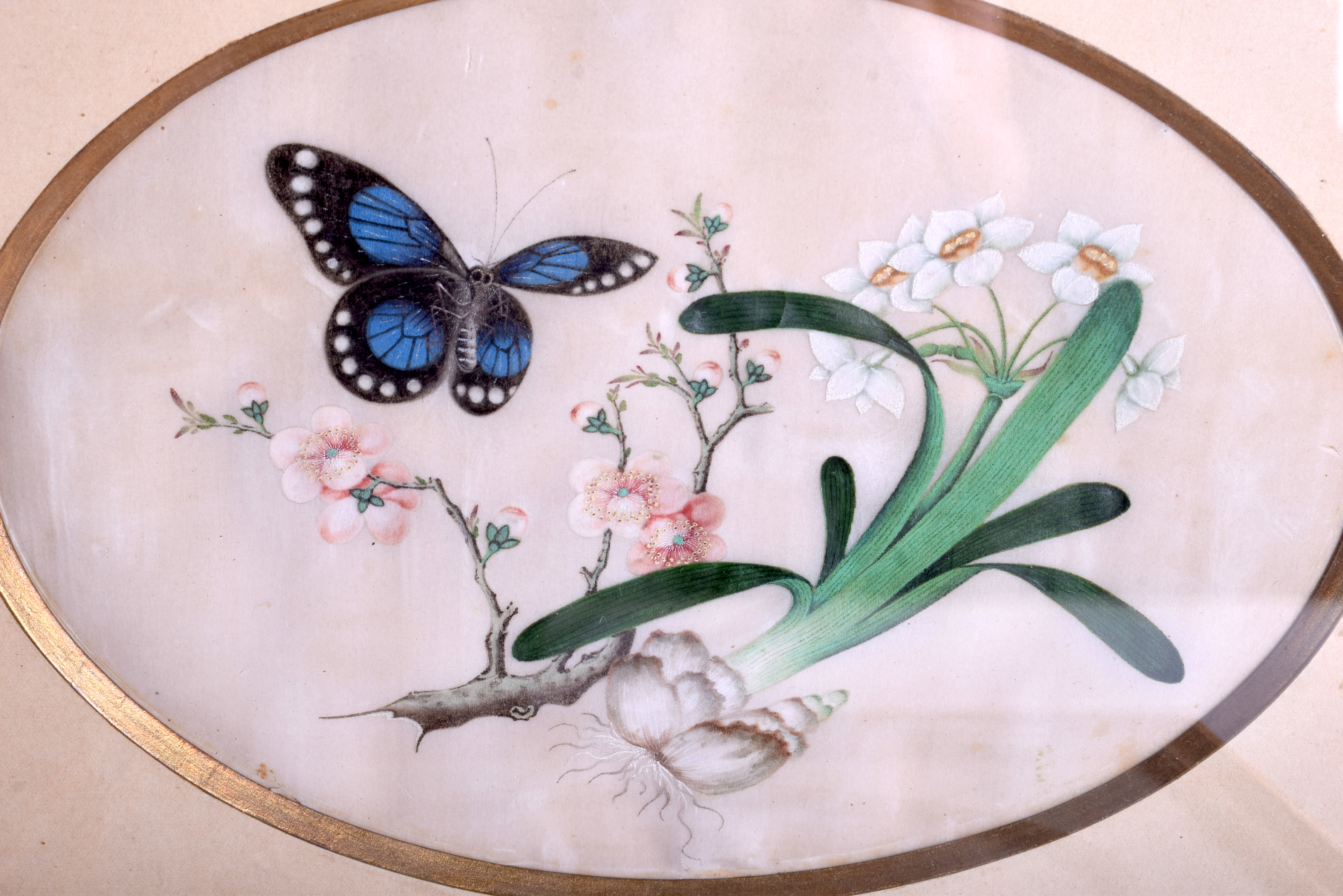 Lot 1631 - A LARGE SET OF FIVE 19TH CENTURY CHINESE PITH PAPER WATERCOLOURS Qing, depicting insect amongst fol