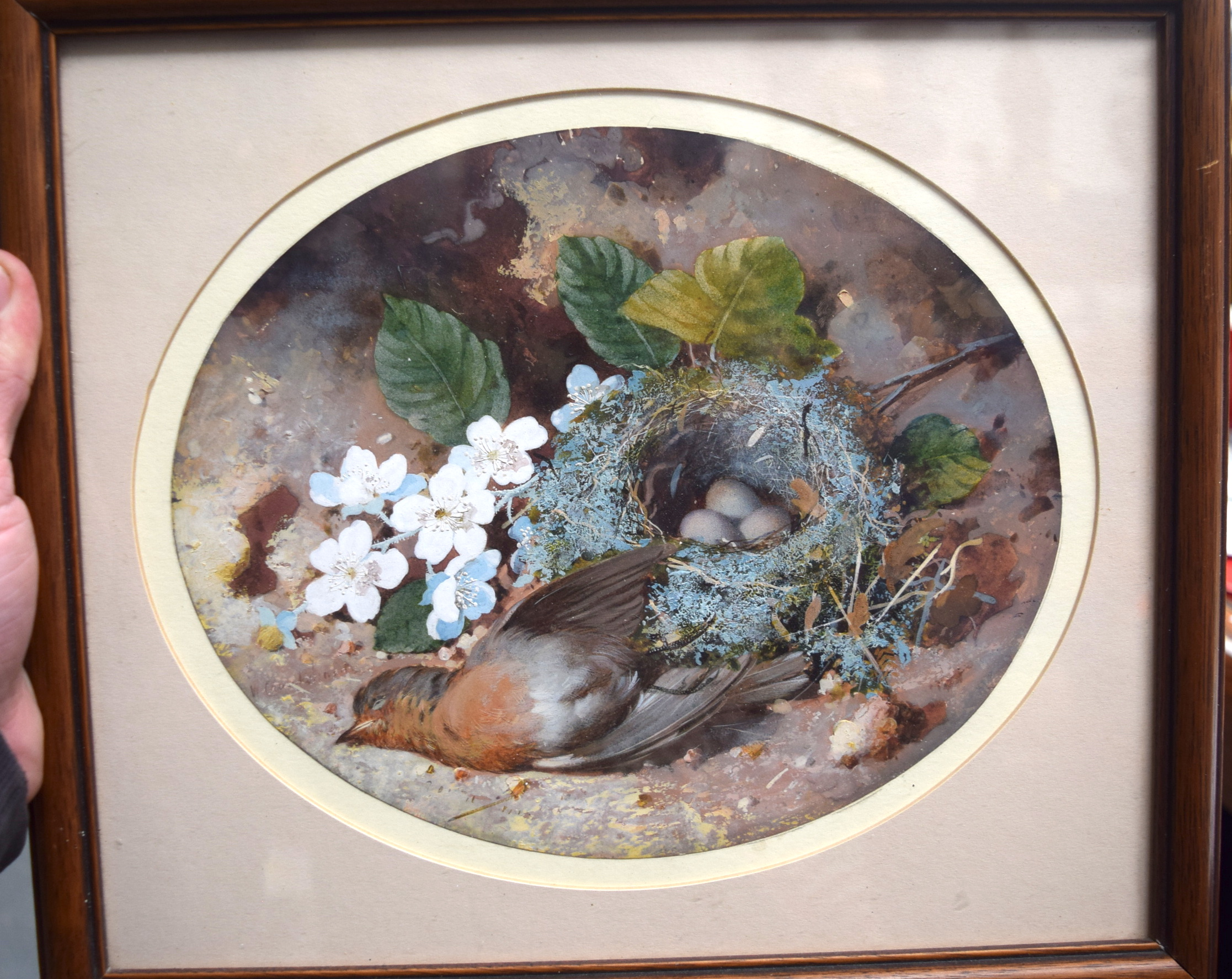 Lot 2917 - BRITISH SHCOOL (Early 20th century), study of a dead bird, 20 cm x 23.5 cm.