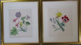 Pair of framed watercolours of flowers possibly by Mary or Dora Gibbons or their mother 29 cm x 34