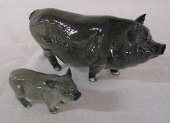 Beswick Vietnamese pot bellied pig no G189 and piglet G213