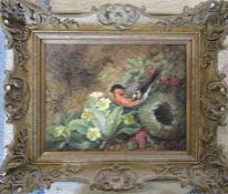 Framed oil on canvas of a bird by its nest and primroses 43 cm x 36 cm (size including frame)