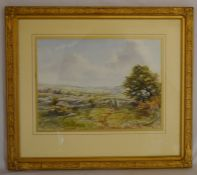 Framed watercolour landscape of a scene above Money Ash, Near Bakewell by Michael Crawley. Frame