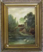 Gilt framed oil on canvas of a pair of swans on the river 46 cm x 56 cm (size including frame)