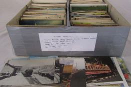 Approximately 1,340 postcards relating to animals, saucy seaside comics, childhood scenes,