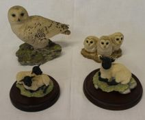 Border Fine Arts snowy owl, All Creatures Great and Small JH14 Herbert, 2 lambs and 3 owl chicks