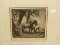 ANTON LOCK. (1893-1970) ARR. THREE PENCIL SIGNED ETCHINGS OF HORSES, VARIOUS SIZES, LARGEST 20 x