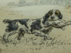 HENRY WILKINSON. (1921-2011) ARR. A RETRIEVER, PENCIL SIGNED COLOUR ETCHING. 24 x 31.5cms.