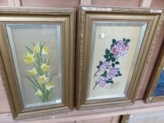 19th.C.SCHOOL. TWO WATERCOLOUR BOTANICAL STUDIES ON SILK, EACH IN GILT FRAME, LARGEST.