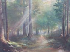 AN OIL PAINTING SUNLIT WOODED PATH.