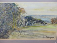 JOAN HAMMOND. 20th.C.BRITISH SCHOOL. ARR. A WOODED LANDSCAPE, SIGNED AND DATED 1989, PASTEL. 29.5