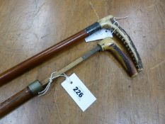 A STAG'S HORN HANDLED HORSE MEASURE RISING UP FROM A CANE WALKING STICK TOGETHER WITH A SWAINE