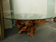 A LARGE AND IMPRESSIVE ROOT WOOD BASED GLASS TOPPED DINING TABLE. 180 x H.74cms.