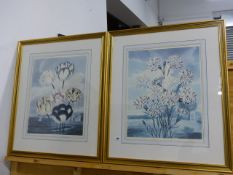 A LARGE PAIR OF FLORAL PRINTS.