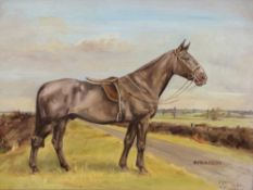 M.WILSON. 20th.C.ENGLISH SCHOOL. ARR. PORTRAIT OF SPRAGGON, A HUNTER, SIGNED AND DATED 1940, OIL