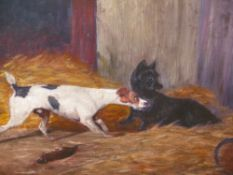 ENGLISH NAIVE SCHOOL. TWO TERRIERS RATTING, OIL ON CANVAS BOARD. 30 x 40cms.