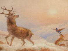 ROLF HENRY ROE. 19th.C.ENGLISH SCHOOL. A NIP ON THE TAIL, SIGNED AND DATED 1864, WATERCOLOUR IN