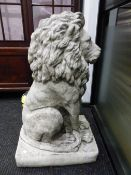 A PAIR OF COMPOSITION STONE LIONS SEATED ON RECTANGULAR BASES. H 89cms.
