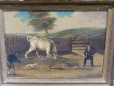 EARL 19th.C.ENGLISH NAIVE SCHOOL. BULL BAITING, OIL ON PAPER, LAID DOWN. 32 x 41cms.