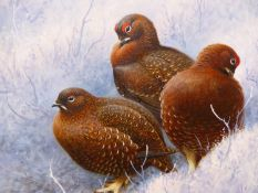 RODGER McPHAIL. (1953-****) ARR. THREE GROUSE IN SNOW, SIGNED OIL ON CANVAS WITH GALLERY LABEL