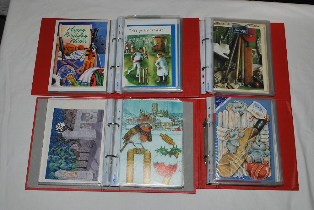 Lot 32 - Cricket greetings cards. Ten files comprising a large selection of over two hundred and fifty modern