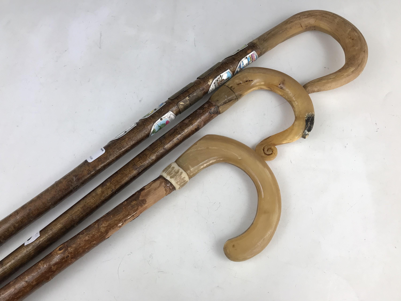 Lot 3 - Three walking sticks