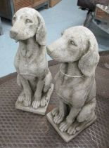 Lot 16 - 'SITTING HOUNDS', a pair, reconstituted stone, 69cm H.