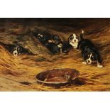 Lot 361 - ROBERT MORLEY (1857-1941) 'A Gleaner', (a mouse feasting from a dish with onlooking spaniel