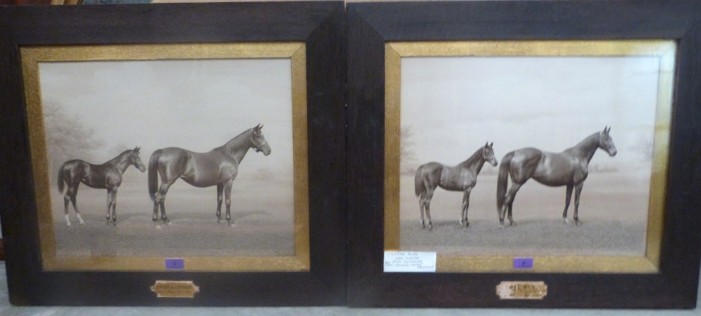 Lot 2 - A pair of oak framed racing photographic prints by Clarence Hailey, Newmarket, 'Pride of Lothian'