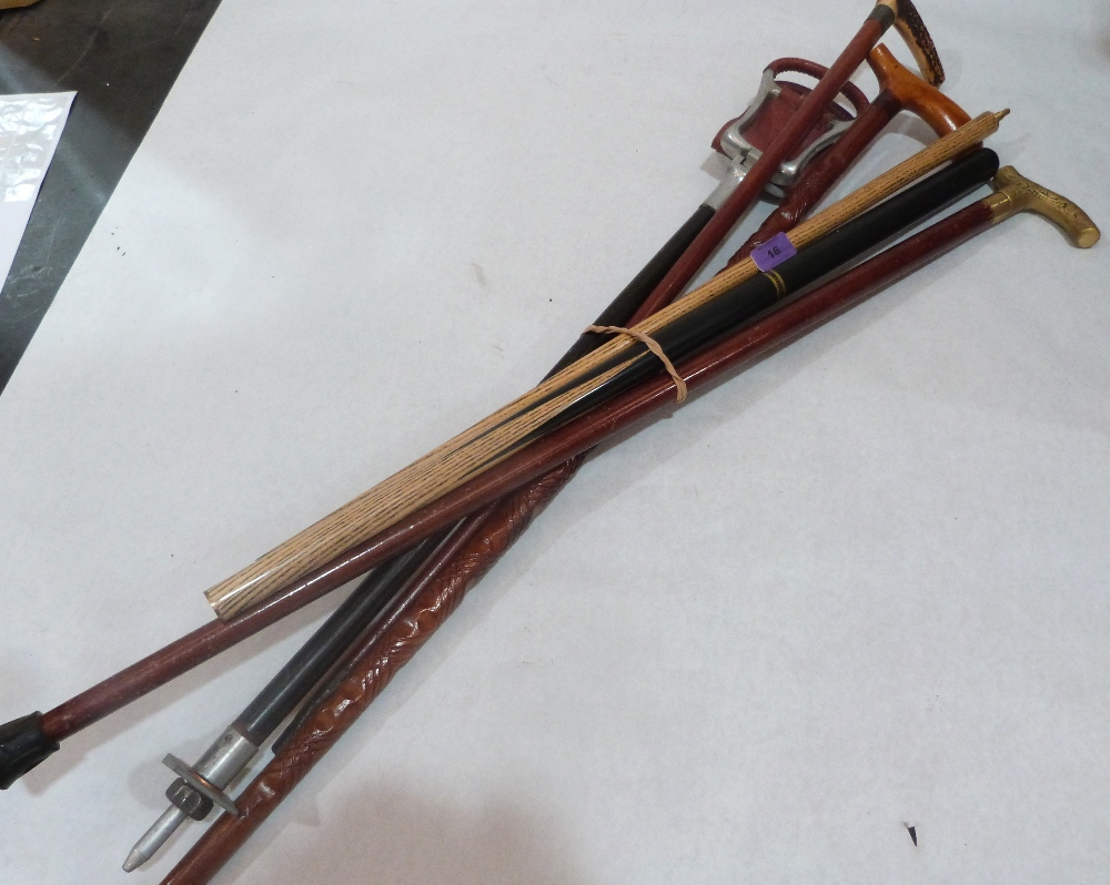 Lot 16 - A shooting stick, three walking canes and a snooker cue