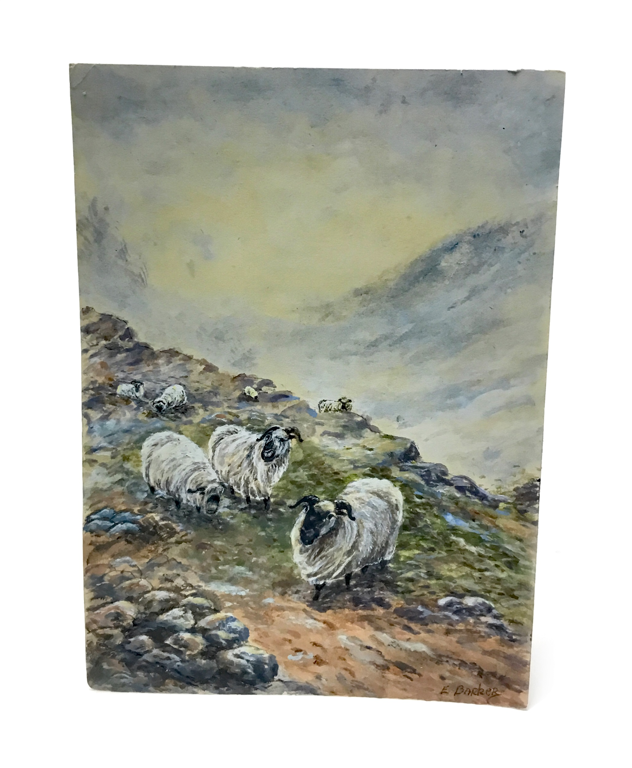 Lot 1271 - A WATERCOLOUR OF SHEEP BY ERNEST BARKER