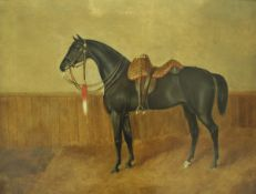 """WITHDRAWN 19TH CENTURY ENGLISH SCHOOL """"Charger of the 8th Hussars"""", study of a charger in a stable,"""