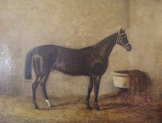 """19TH CENTURY ENGLISH SCHOOL """"Hunter in a Stable"""", oil on canvas, unsigned, approx 30.5 cm x 40."""