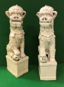 A matched pair of 19th Century Chinese blanc-de-chine figures of temple lions,
