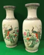 A pair of Chinese porcelain vases, polychrome decorated with Pea Fowl amongst blossom,