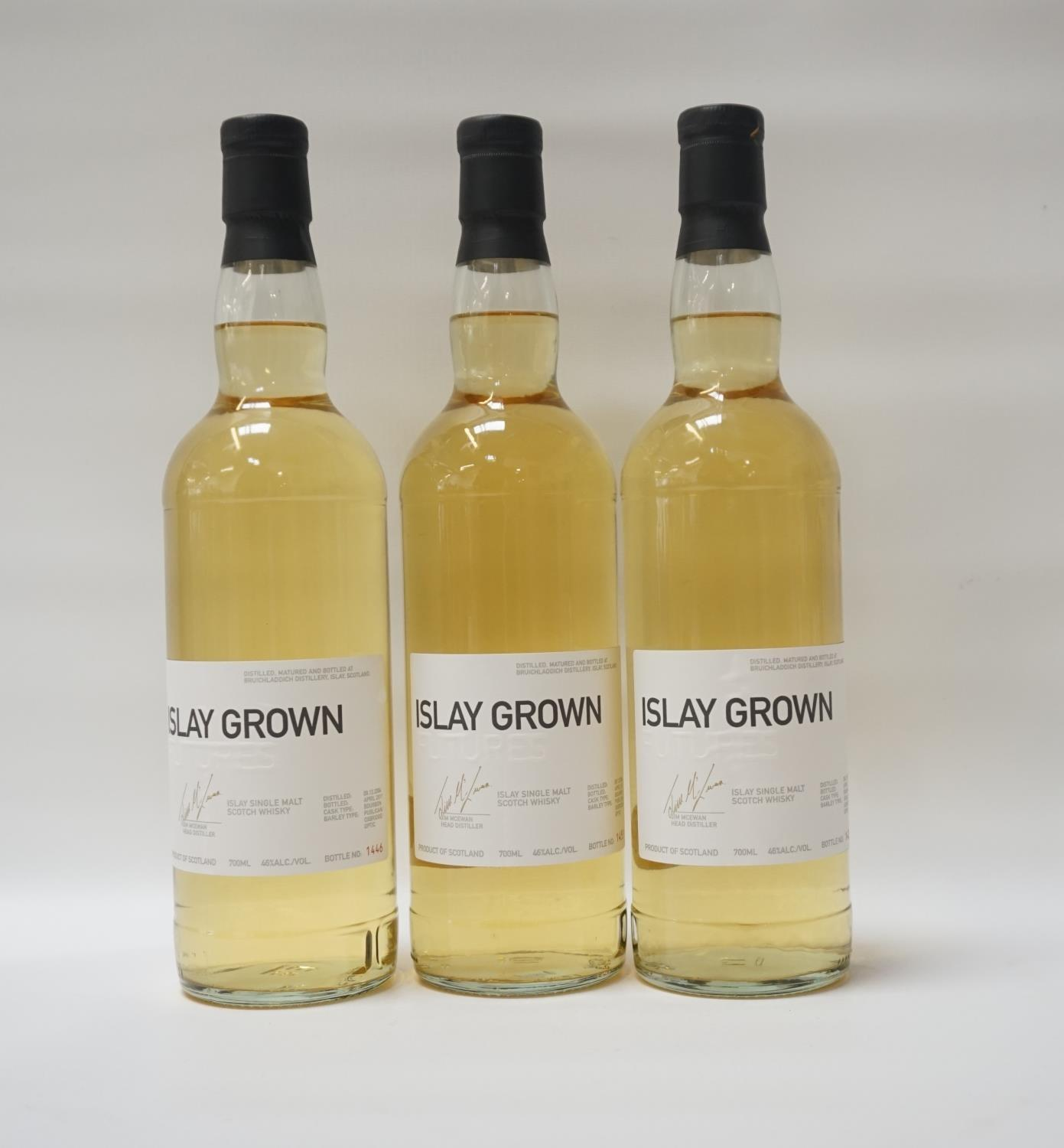 Lot 23 - THREE BOTTLES OF BRUICHLADDICH FUTURES ISLAY GROWN Bruichladdich Distillery offered individuals