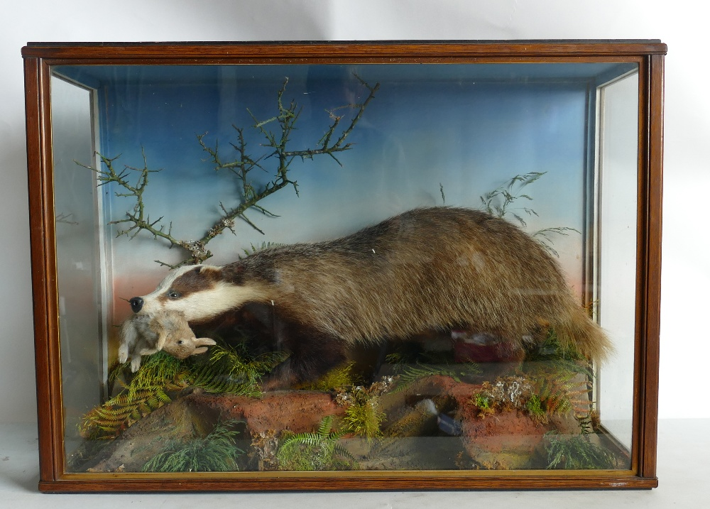 Lot 1415 - Cased Victorian Taxidermy Scene of Badge