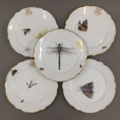 Five 19th century Continental porcelain plates decorated with various insects and butterflies