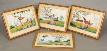 Four 19th century Chinese rice paper paintings Each depicting various birds in naturalistic