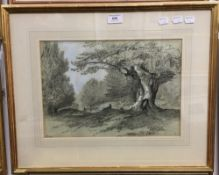 After ROBISON, Burnham Beeches, highlighted print, signed within the plate,