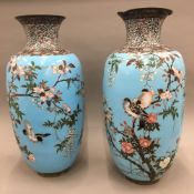 A large pair of late 19th/early 20th century cloisonne vases