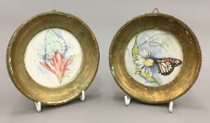 CRIS THEISSEN (20th century), a pair of watercolours depicting butterflies alighting on flowers,