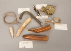 A collection of African natural history curios Including hippo teeth and a python skin,
