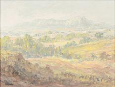 PETER GLADMAN (20th century) Zimbabwean Extensive Landscape Oil on board,