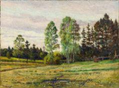 G DUNZINGER (19th century) German, Landscape, oil on canvas, signed, unframed. 69.5 x 51.5 cm.