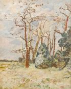 CONTINENTAL SCHOOL (early 20th century), Tree Study, oil on canvas, framed. 39 x 49.5 cm.